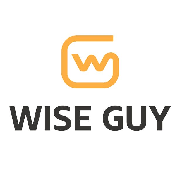 Wise Guy Computer & iPhone Repair