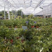 Petitti garden centers nurseries gardening 18941 - Petitti garden center strongsville ...