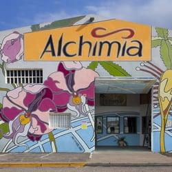 Alchimia growshop viveros y jardiner a carrer llevant Viveros en girona