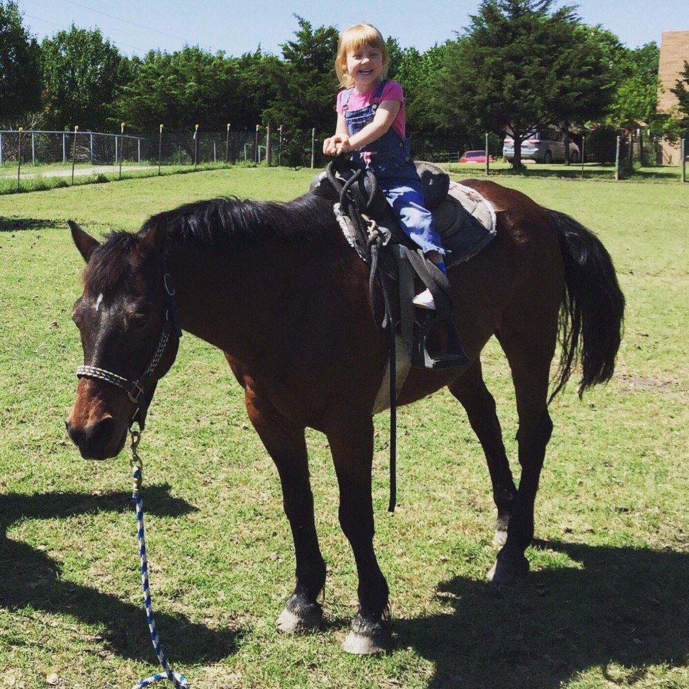 My Vacation Pet Nanny: 117 Bonsai Dr, Anna, TX