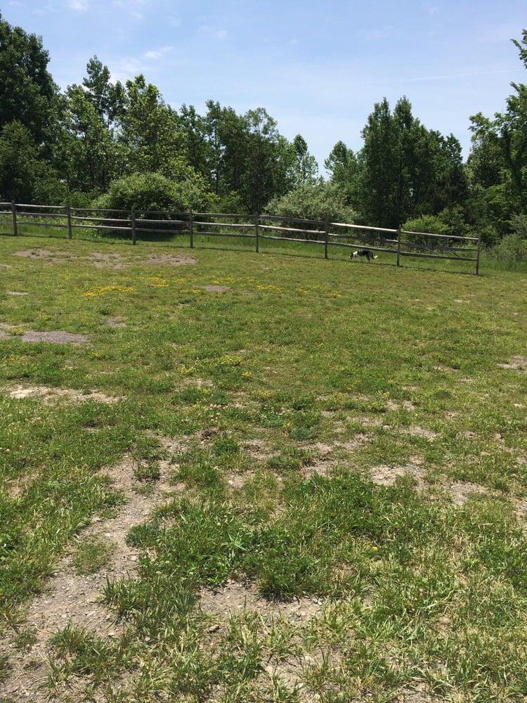 North Fayette Dog Park