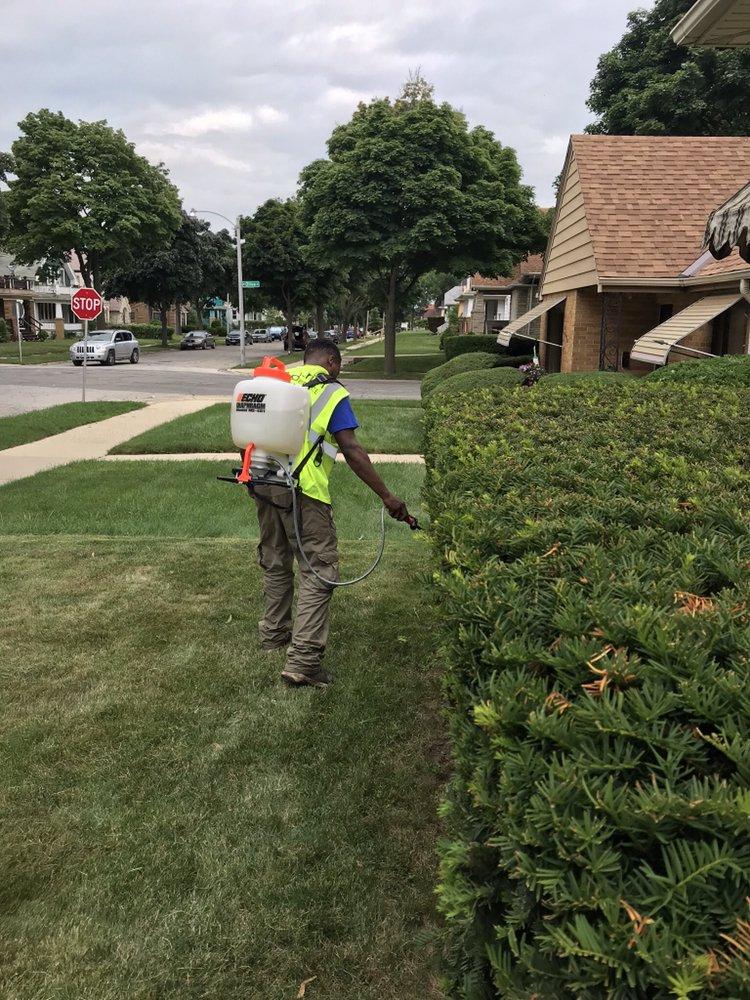 Tidy Trim Lawn Service