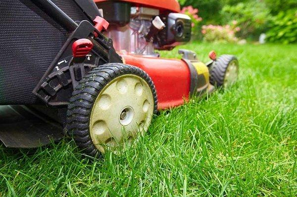 Etonnant Photo Of Garciau0027s Gardening Service   Whittier, CA, United States