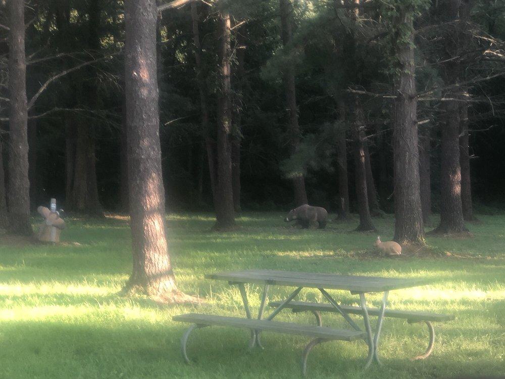 Van Buren State Park: 12259 Township Rd 218, Van Buren, OH