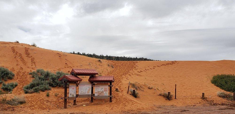 Coral Pink Sand Dunes State Park: 12500 Sand Dune Rd, Kanab, UT