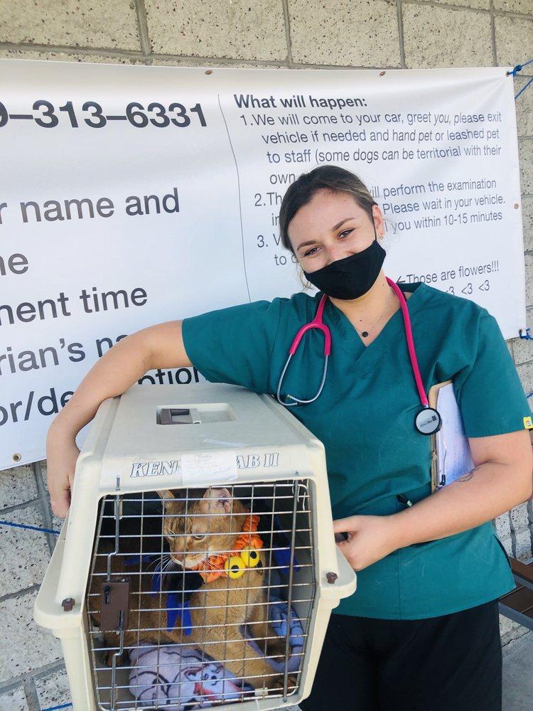 South Orange County Animal Hospital