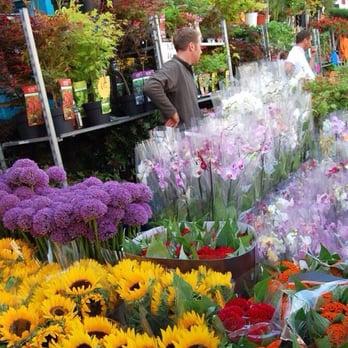 Photo of Columbia Road Flower Market - London, United Kingdom