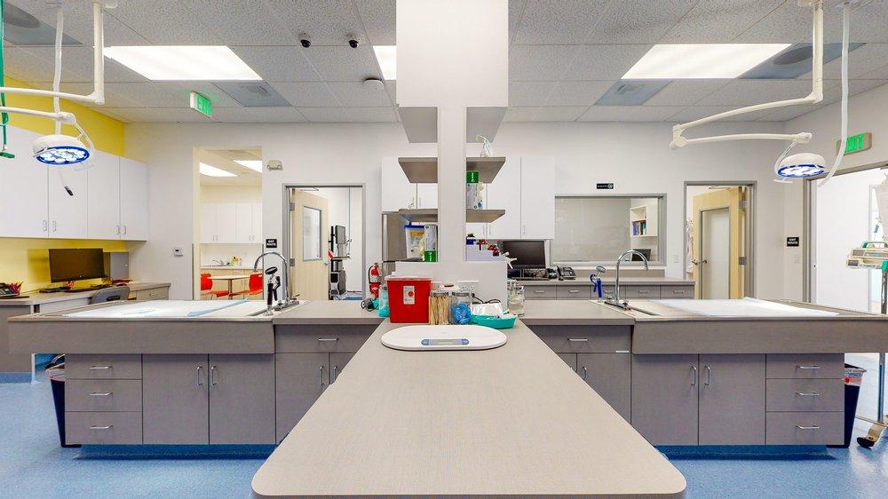 Corona Animal Emergency Center: 541 N Main St, Corona, CA
