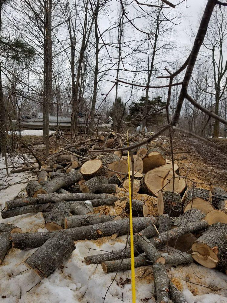 Tree Cuts Plus: Pierz, MN
