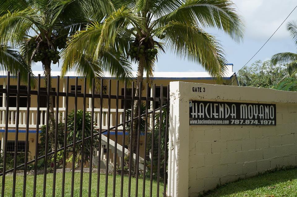 Hacienda Moyano: Carretera 971 Km 13.4, Naguabo, PR