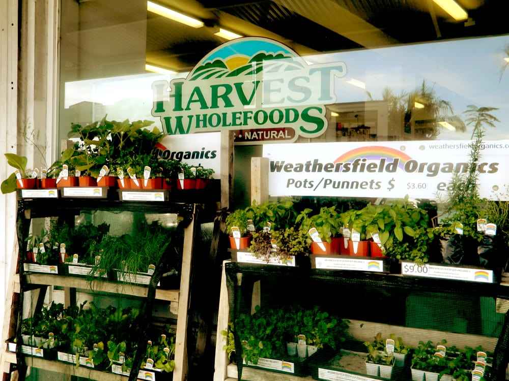 Harvest Health And Whole Foods Fl