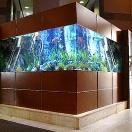Perfect Photo Of Living Art Aquatic Design   Los Angeles, CA, United States