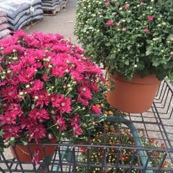 photo of fairless hills garden center fairless hills pa united states - Fairless Hills Garden Center