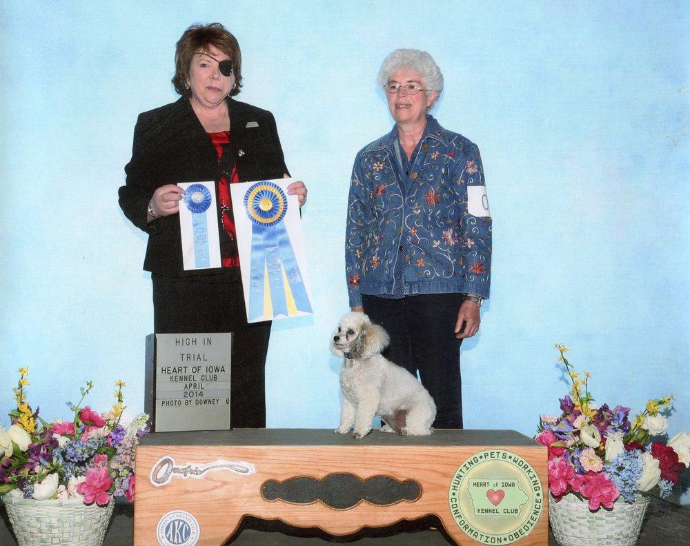 Bijoux Dog Academy: 75 East St, Shelby, IA