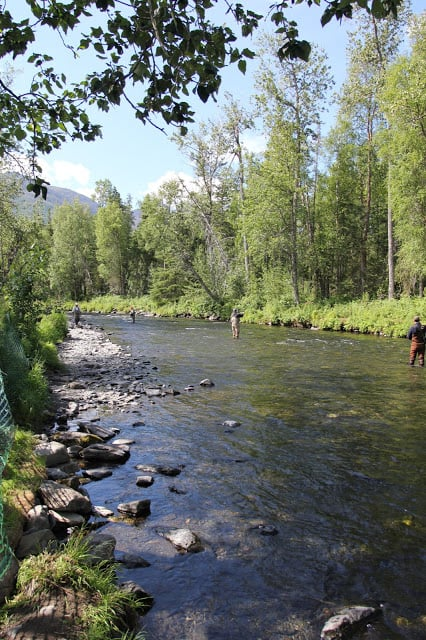 Russian River Campground: Sterling Hwy, Cooper Landing, AK