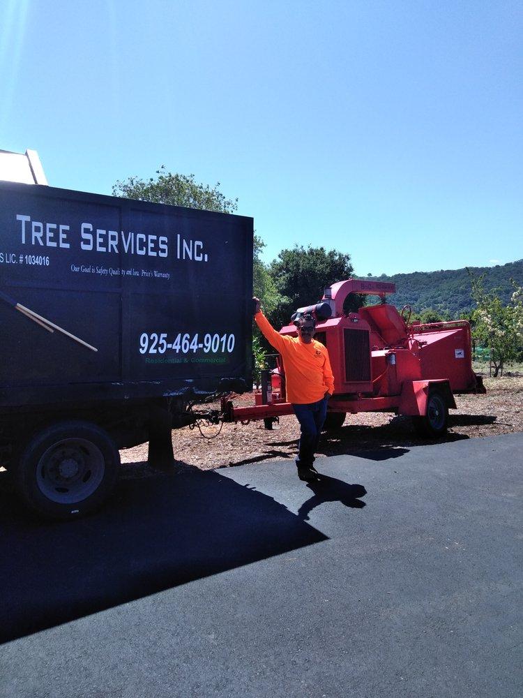 Better City Tree Service: Martinez, CA