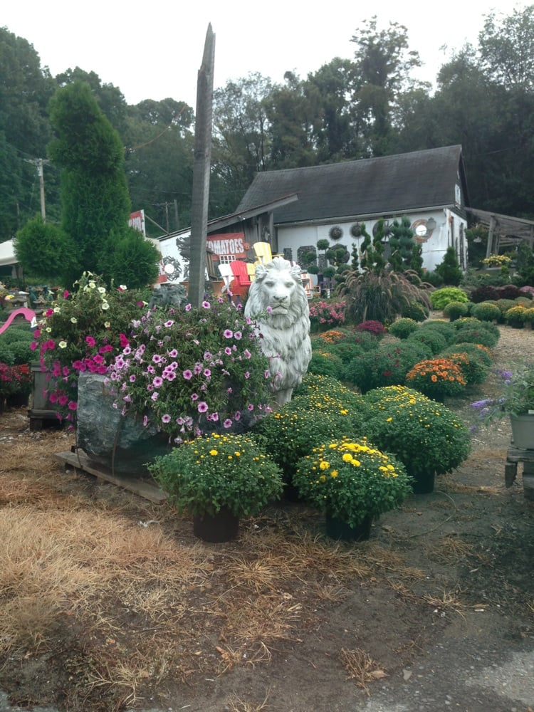 Maryland Plants and Produce: 1340 Defense Hwy, Gambrills, MD