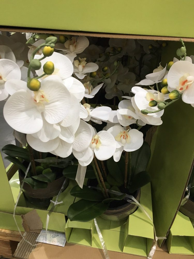 Photo Of Costco Whole Cypress Ca United States Fake Orchids On
