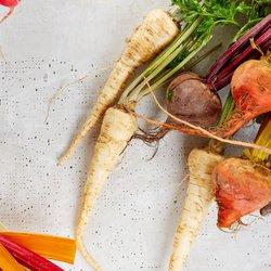 NOSH - CLOSED - 116 Photos & 100 Reviews - Salad - 150 W Castellano Planters Veggie Box Restaurant Story on veggie plants, veggie pringles, veggie animals, veggie garden, veggie baskets, veggie trees,