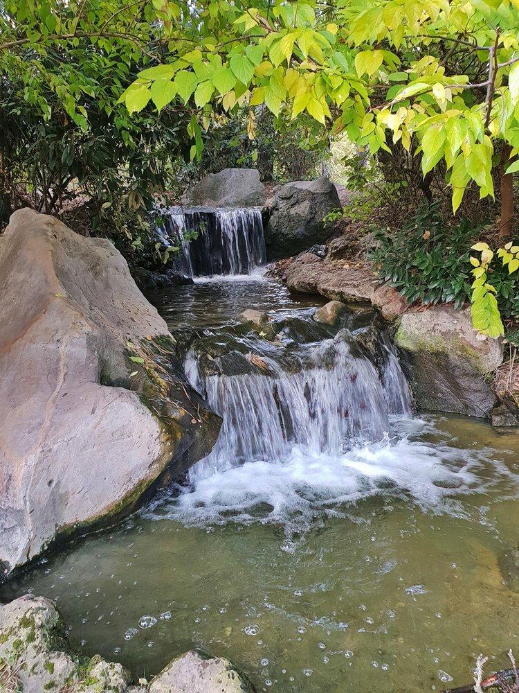Photos For Japanischer Garten Im Nordpark Yelp