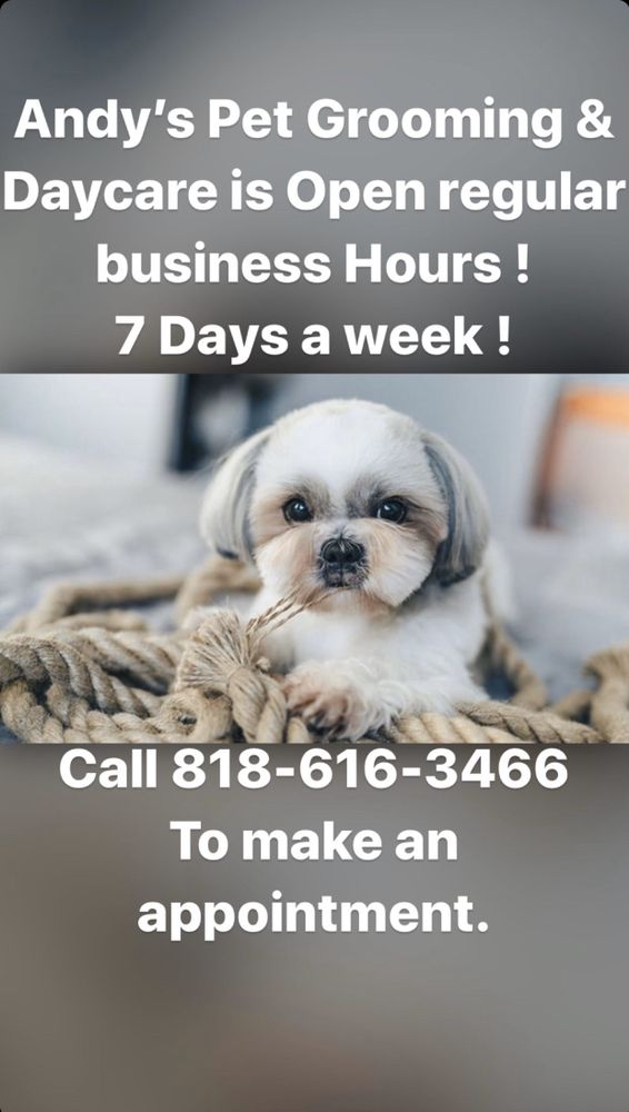 Andy's Pet Grooming & Daycare
