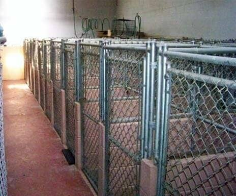 7 Seas Pet Care Center: 13311 S Brandon Ave, Chicago, IL