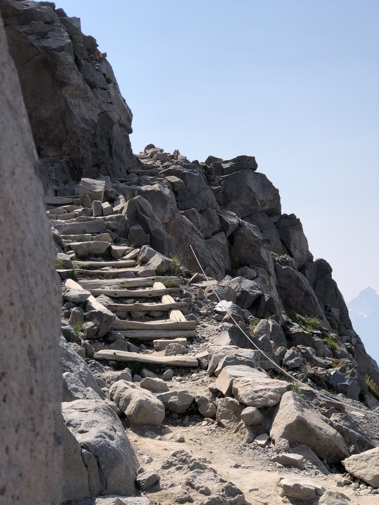 Paradise Glacier Trail - Mount Rainier National Park: 39000 State Rt 706 E, Ashford, WA