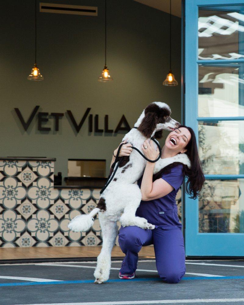 Vet Villa Animal Hospital: 2140 Huntington Dr, South Pasadena, CA