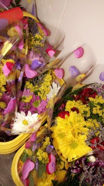 Flowers Etc: 1103 Palmyra St, Dixon, IL