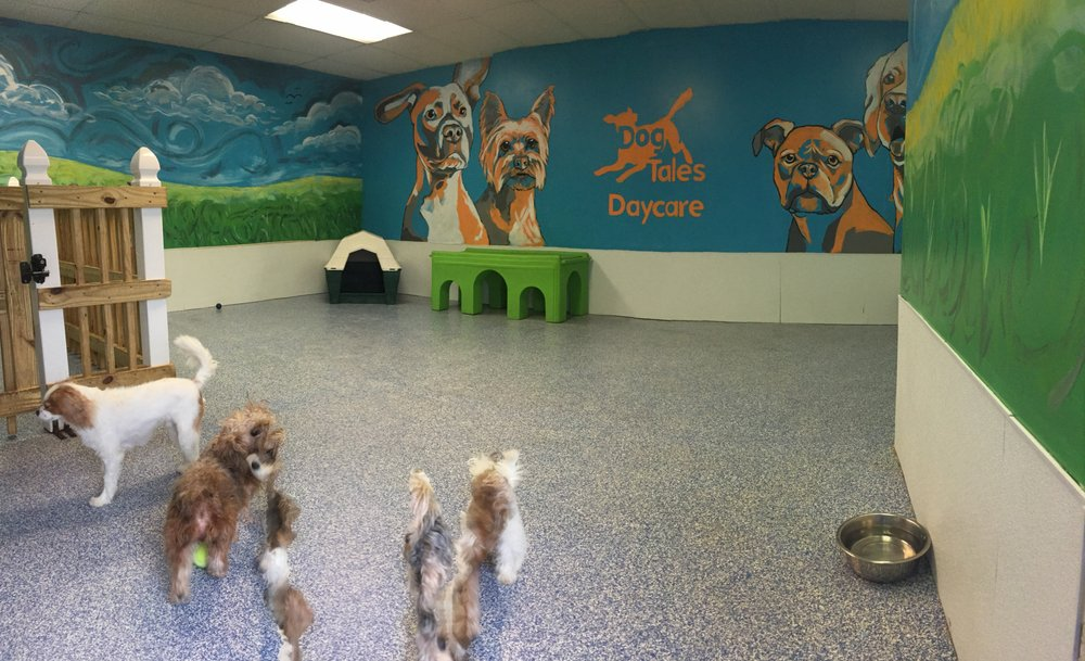 dog play room garage photo of dog tales daycare chantilly va united states our small playroom recently got fresh paint job yelp