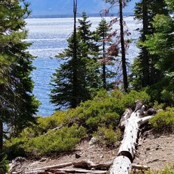 Eagle Point Campground Campgrounds 41 Photos 21 Reviews