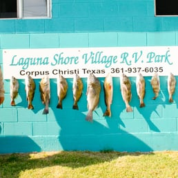 Photos For Laguna Shore Village RV Park