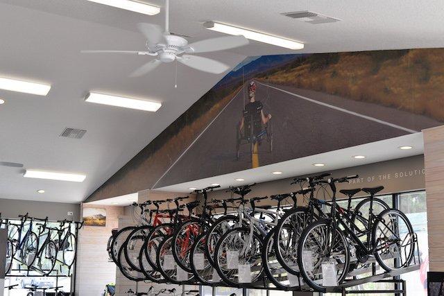 David's World Cycle: 739 S Main St, Wildwood, FL