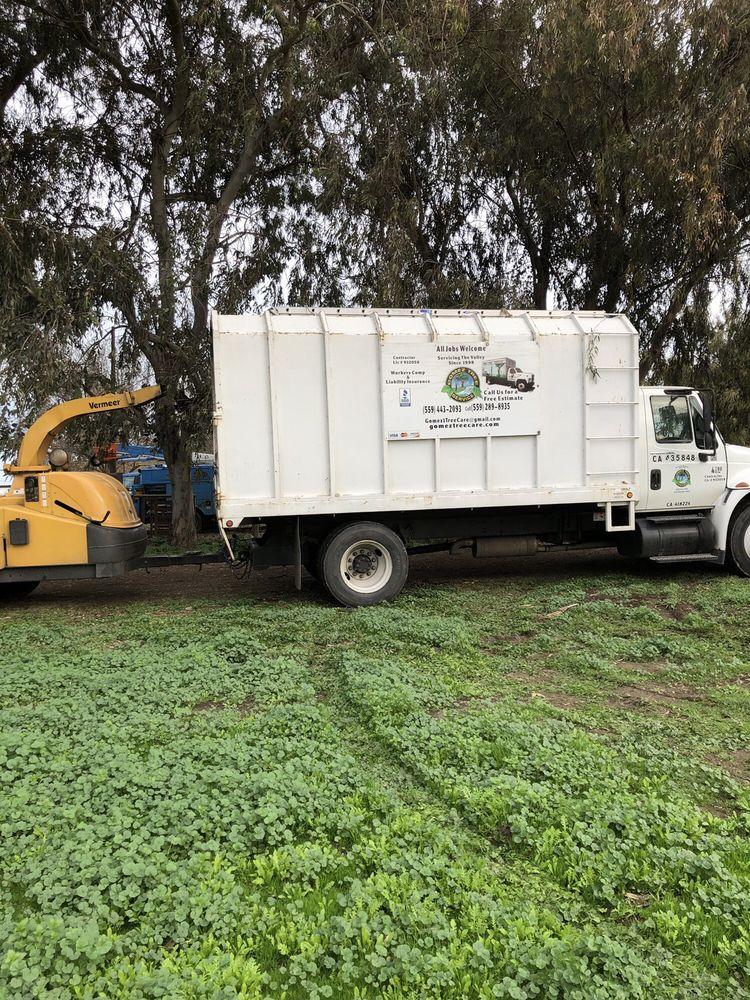 Gomez Tree Service: Fresno, CA