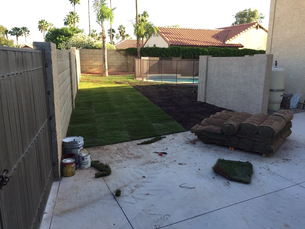 Evergreen Turf: 11407 E Germann, Chandler, AZ