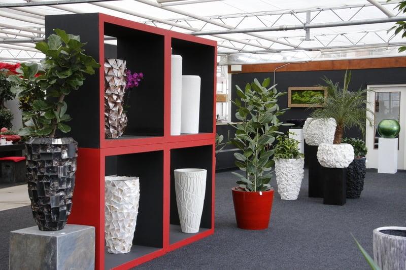 plantenwacht interieur beplantingen g rtnerei gartencenter oostkanaalweg 3 d. Black Bedroom Furniture Sets. Home Design Ideas