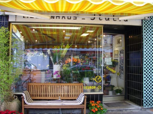 blumenhaus italia florists oeder weg 26 nordend west frankfurt hessen germany phone. Black Bedroom Furniture Sets. Home Design Ideas