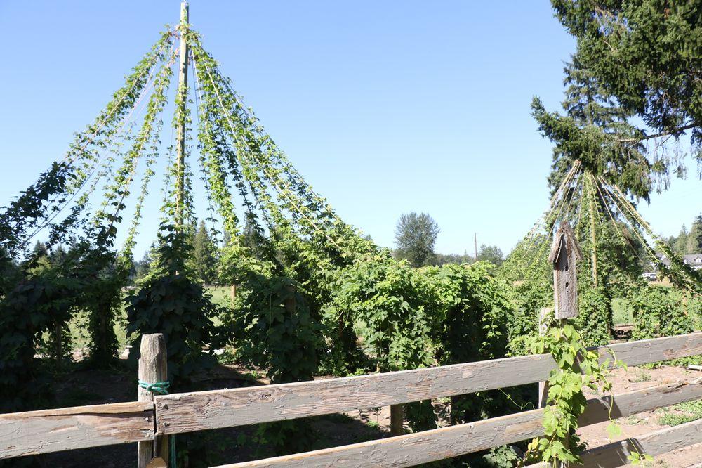 Farm Shed Wines & Brew: 22808 Sumner Buckley Hwy E, Buckley, WA