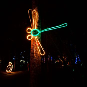 Photo of James Island Festival Of Lights - Charleston, SC, United States