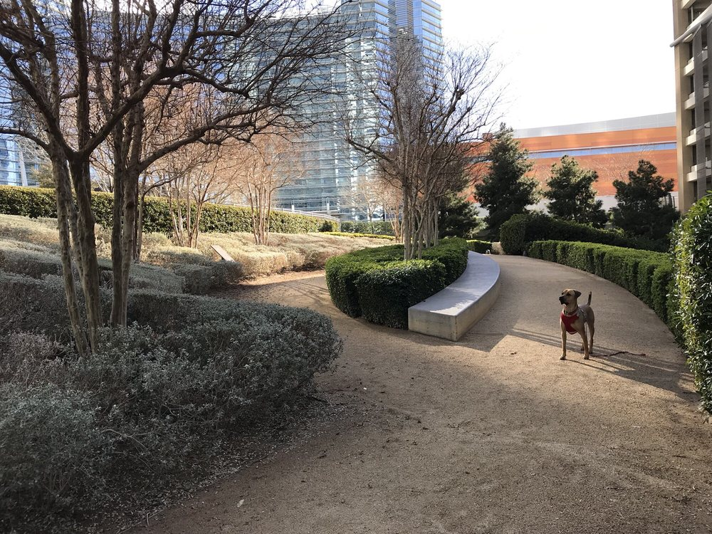 Vdara Dog Park