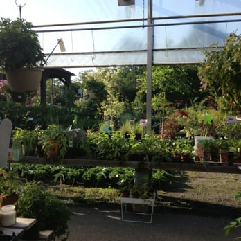 Photo Of Trail Gardens Florist U0026 Greenh   Pottsville, PA, United States