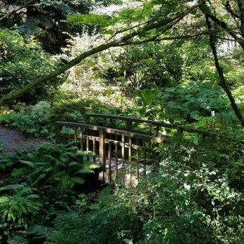 photo of seattle chinese garden seattle wa united states - Seattle Chinese Garden