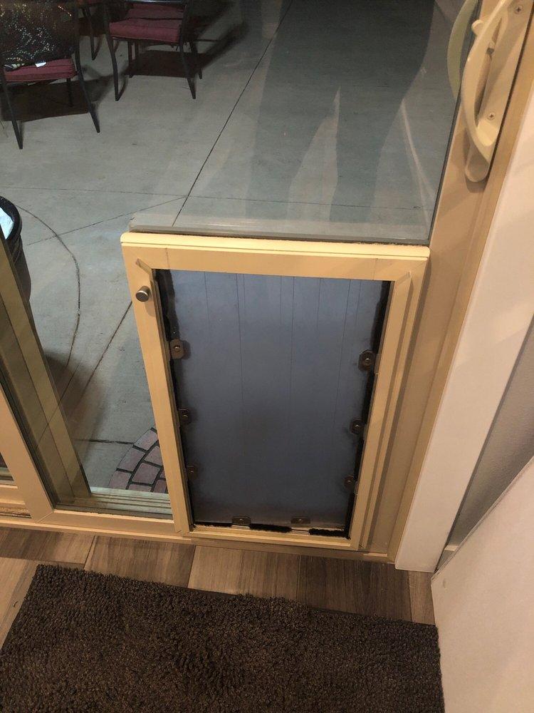 Through the Glass Dog Doors: Denver, CO