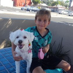 Suds n paws 24 reviews pet groomers 2349 fletcher pkwy el photo of suds n paws el cajon ca united states here is solutioingenieria Images