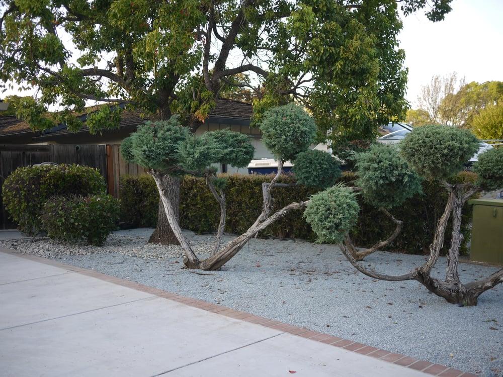 Photos For Eden Garden Design Group Yelp