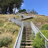 The 16th Avenue Tiled Steps - 1624 Photos & 541 Reviews - Local ...
