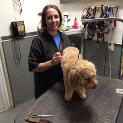 Midwest Dog Training North Sioux City Sd