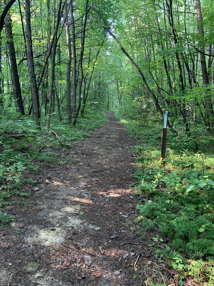 Boch Hollow State Nature Preserve: 7000 Beach Camp Rd, Logan, OH
