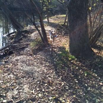 Dog Park Downingtown Pa