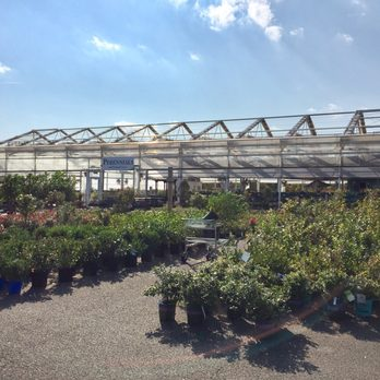 Merveilleux Photo Of Merrifield Garden Center   Gainesville, VA, United States.  Perennials Greenhouse